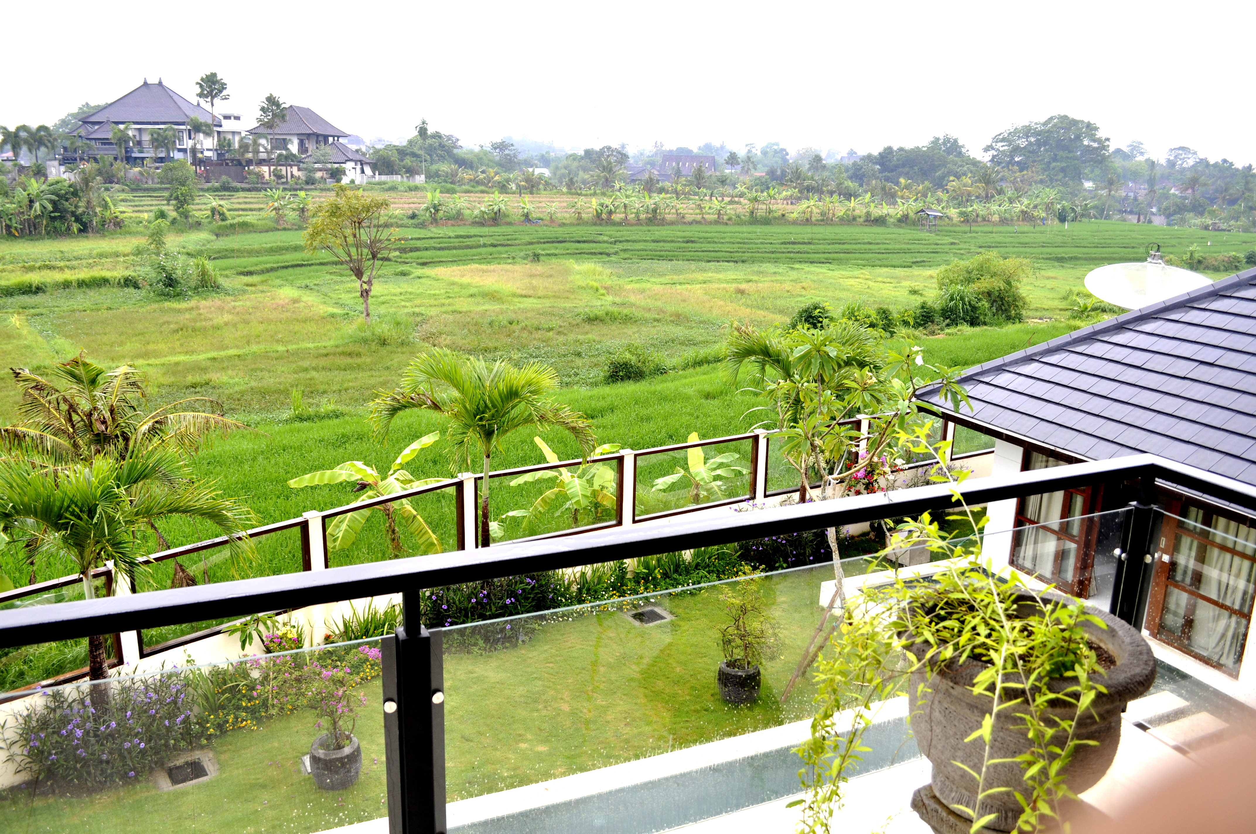 Brand New Rice Field View in Canggu for sale