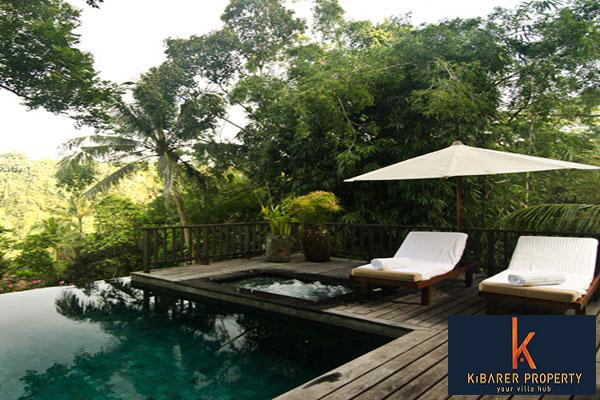 Amazing Freehold Jungle View Villa for Sale in Ubud