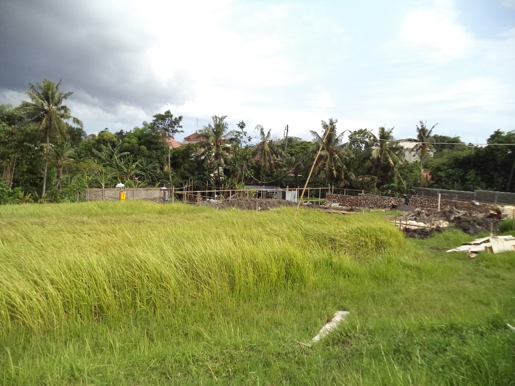 Prime location land 19.2 are in Tegal Cupek