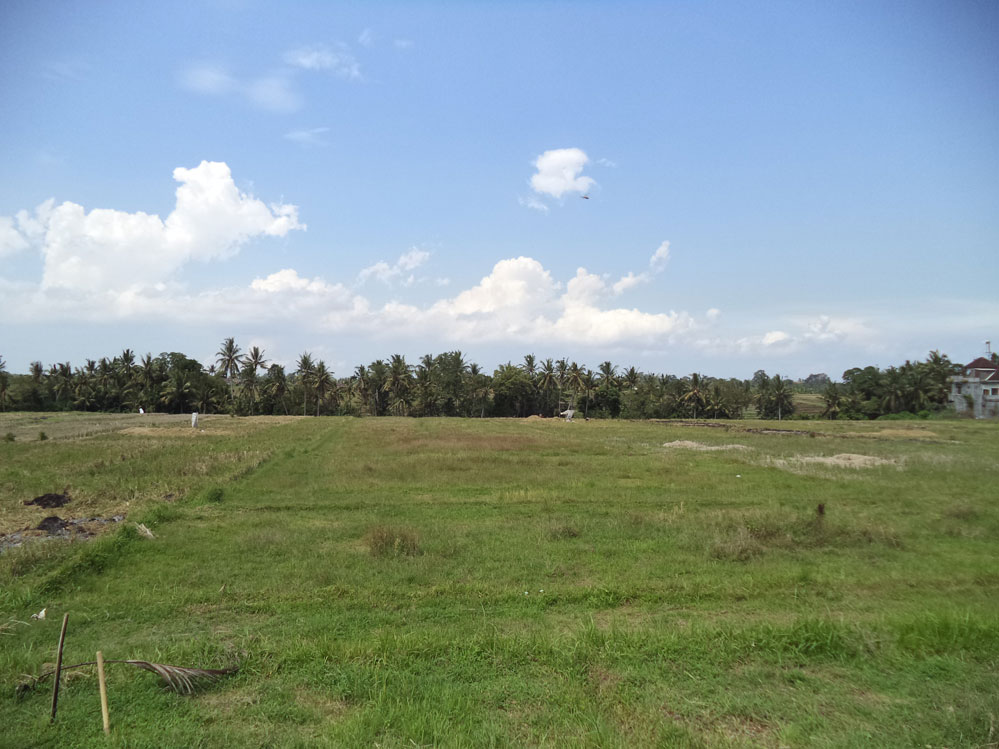 Freehold land 46 are near Tanah Lot - Buit Tabanan