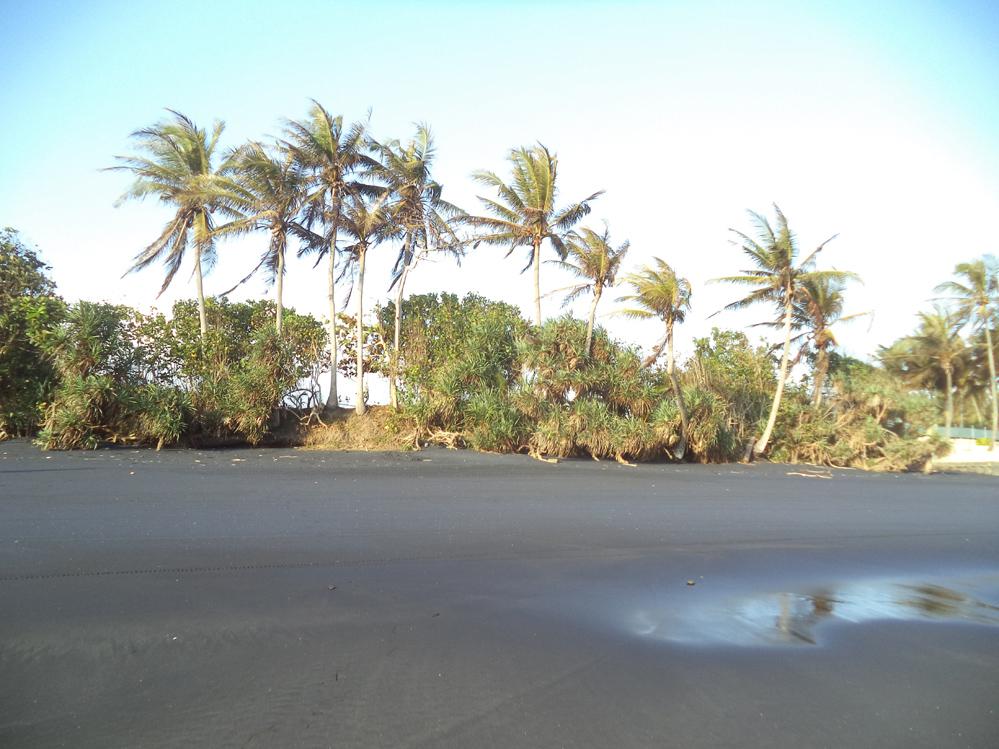 Absolutely Beachfront Land 30 are Pasut Tabanan