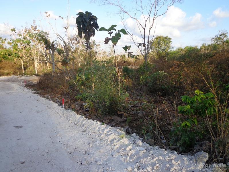Freehold land 45 are seaview Pecatu Bukit