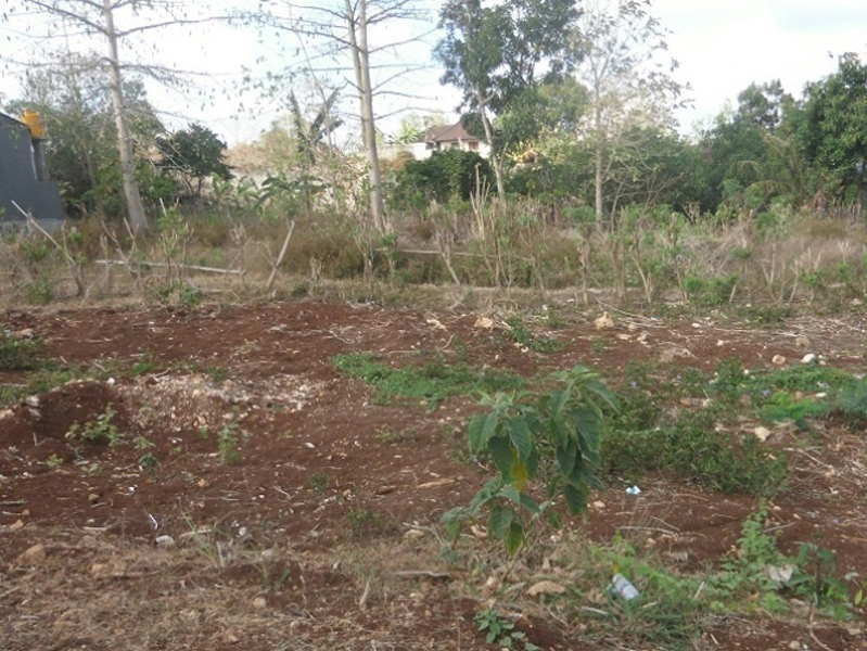 Freehold land 2 are - Dreamland Uluwatu