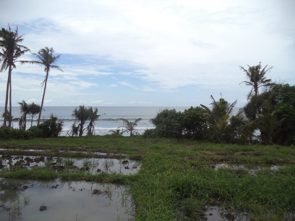Absolute beachfront with ricepaddy view Tabanan