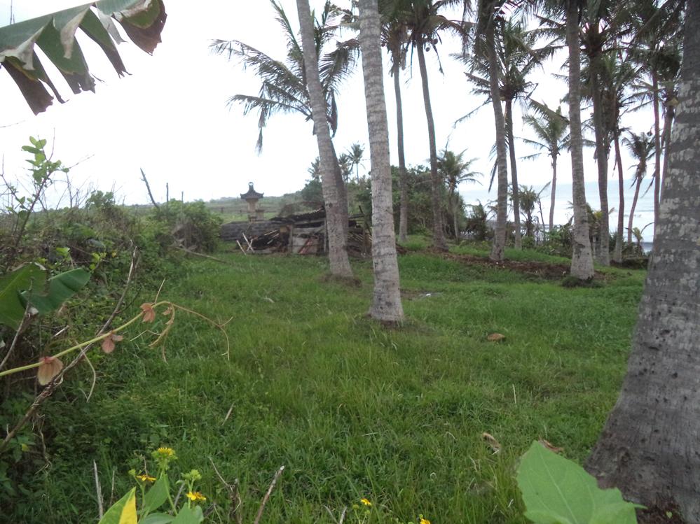 Absolutely beachfront freehold land Pasut Tabanan