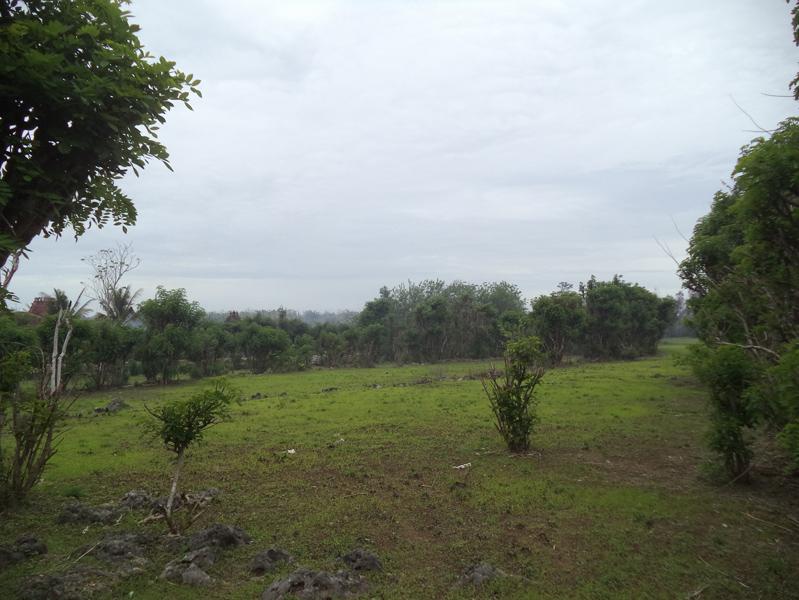 Big freehold land 1.445 ha - Uluwatu