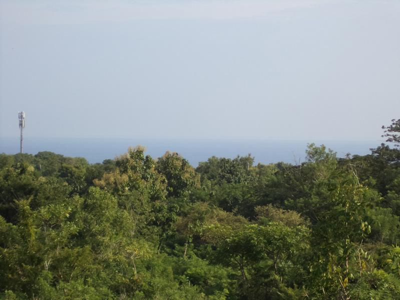 Nice freehold land near Banyan Tree - Ungasan