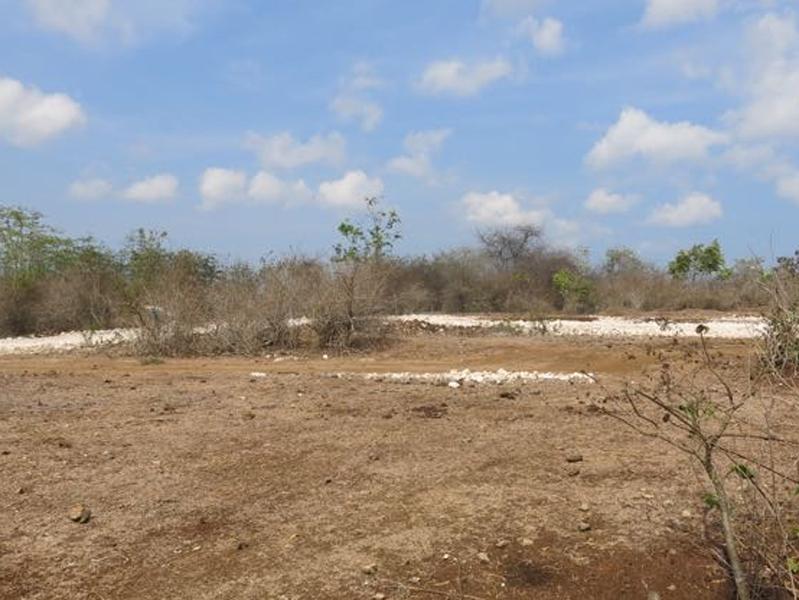 Nice Land Freehold 4.25 are in Jimbaran