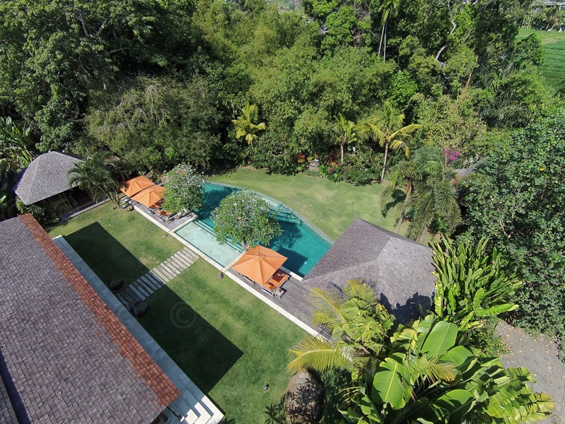 Amazing freehold real estate for sale in Canggu - Pererenan