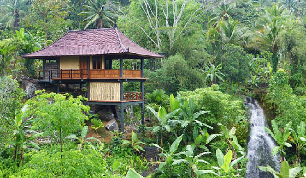 Amazing Treehouses In Bali You Can Actually Stay In