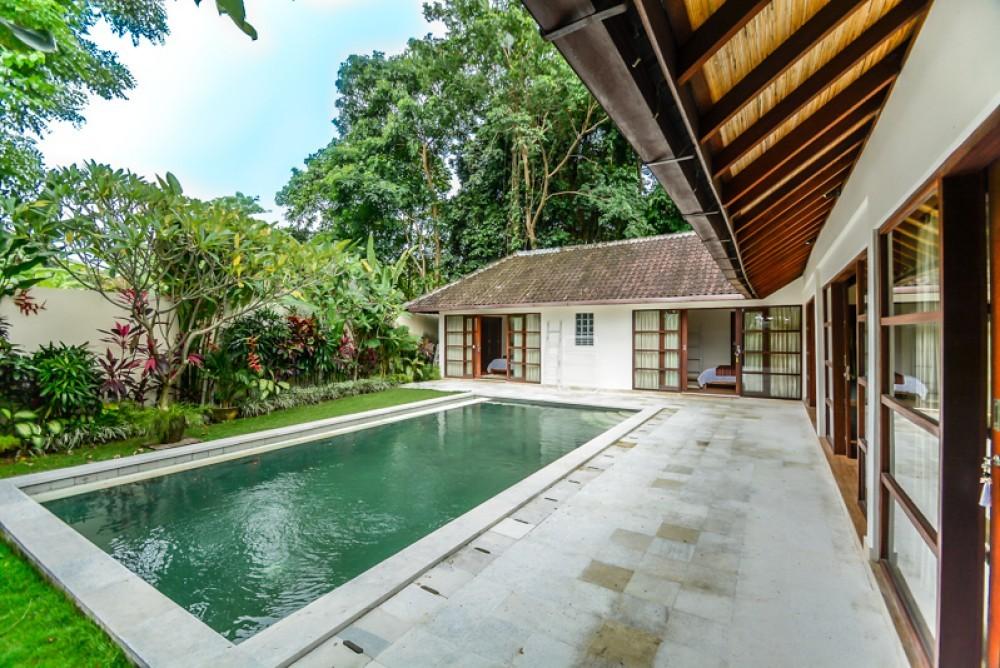 Lovely Real Estate in Padonan Canggu