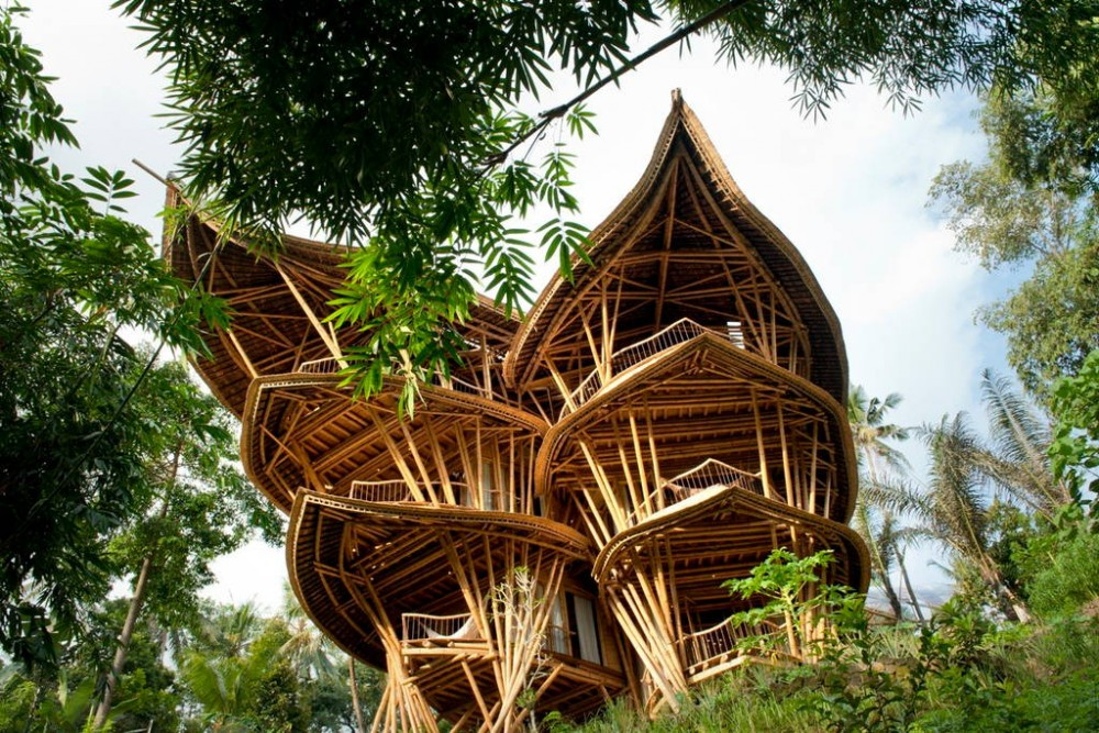 Extraordinary 5 floor Bamboo Palace