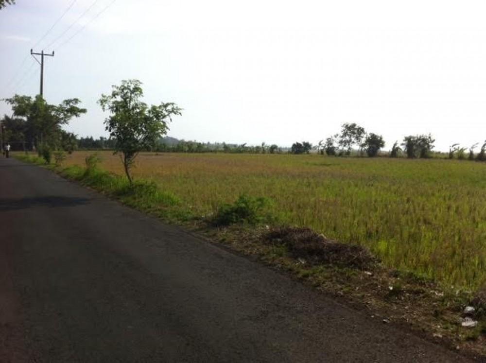 Ideal Freehold Land For Sale di Pantai Kelating Tabanan