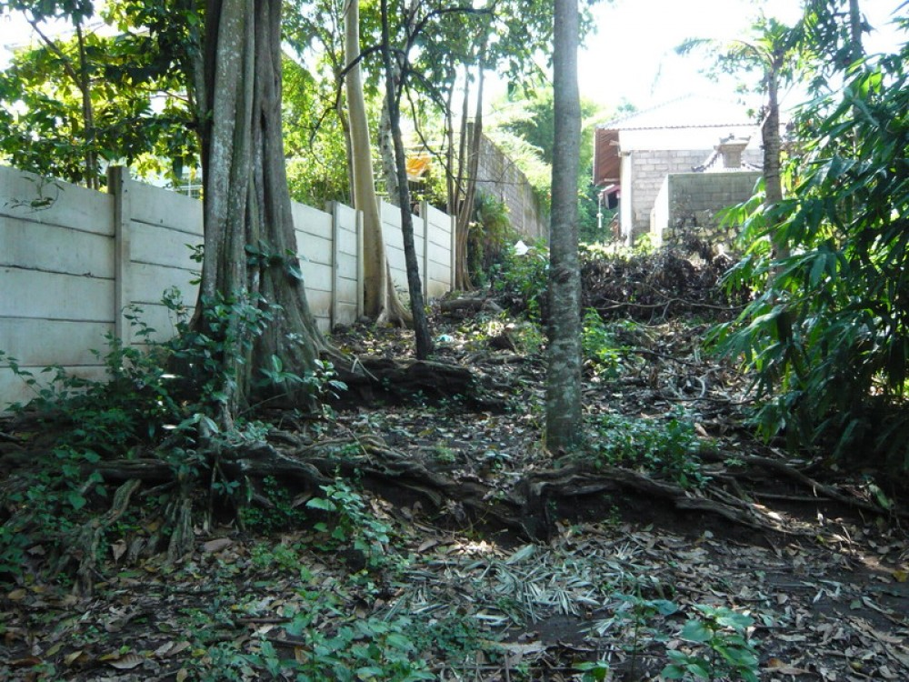 Leasehold Land in Peaceful Area of Umalas For Sale