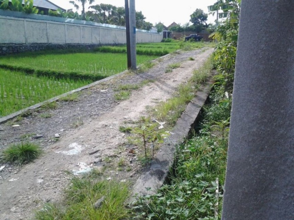 Ideal Leasehold Land For Sale in Tegal Cupek Umalas