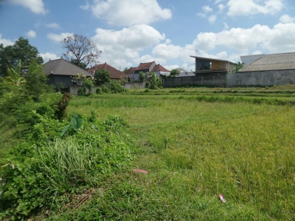 Big Land with Long Leasehold For Sale in Kerobokan