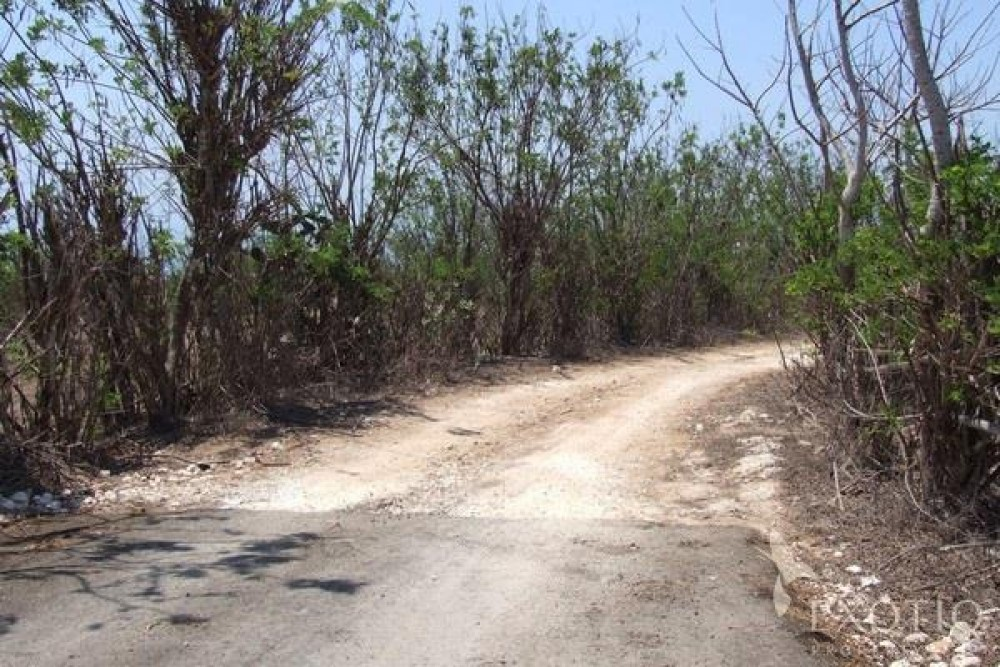 Beautiful 93 Are Freehold Cliff Front Land For Sale in Ungasan