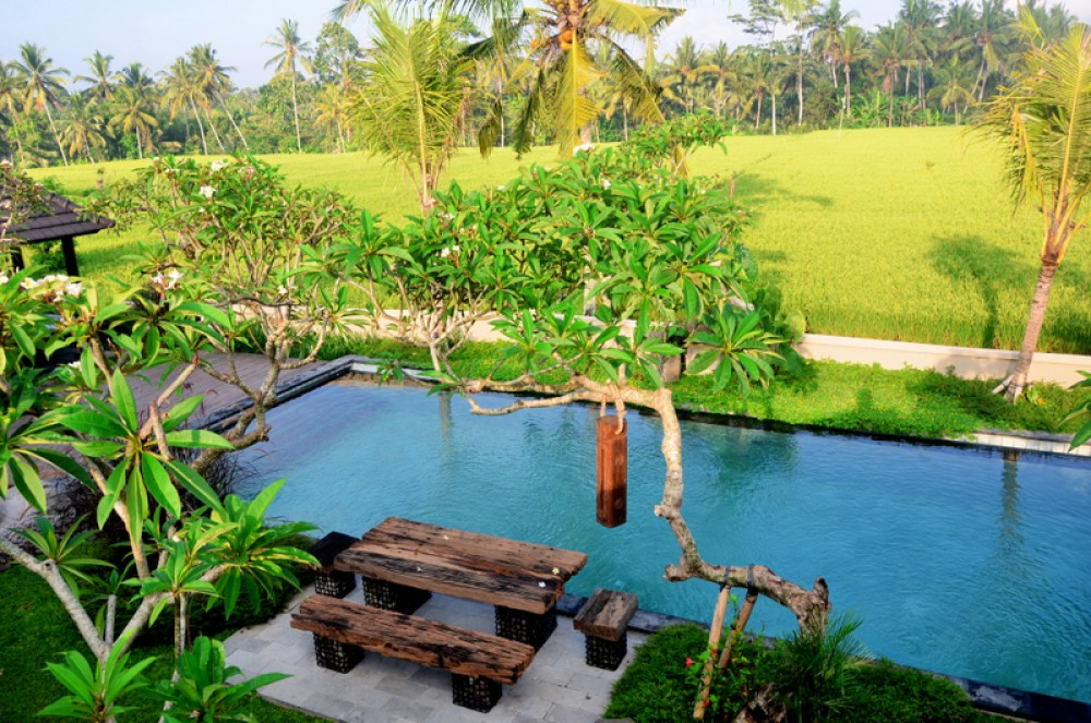 a taste of paradise in Ubud