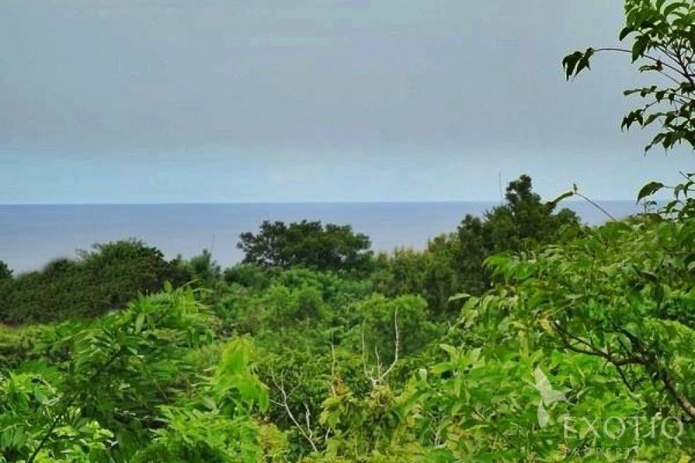 Great Ocean View Land in Ungasan