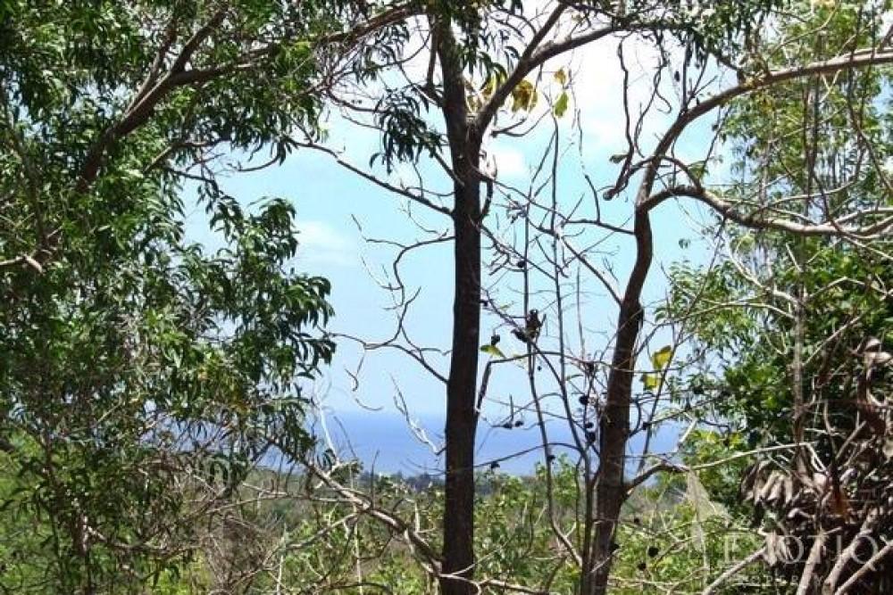 Stunning Ocean View Freehold Land in Bukit