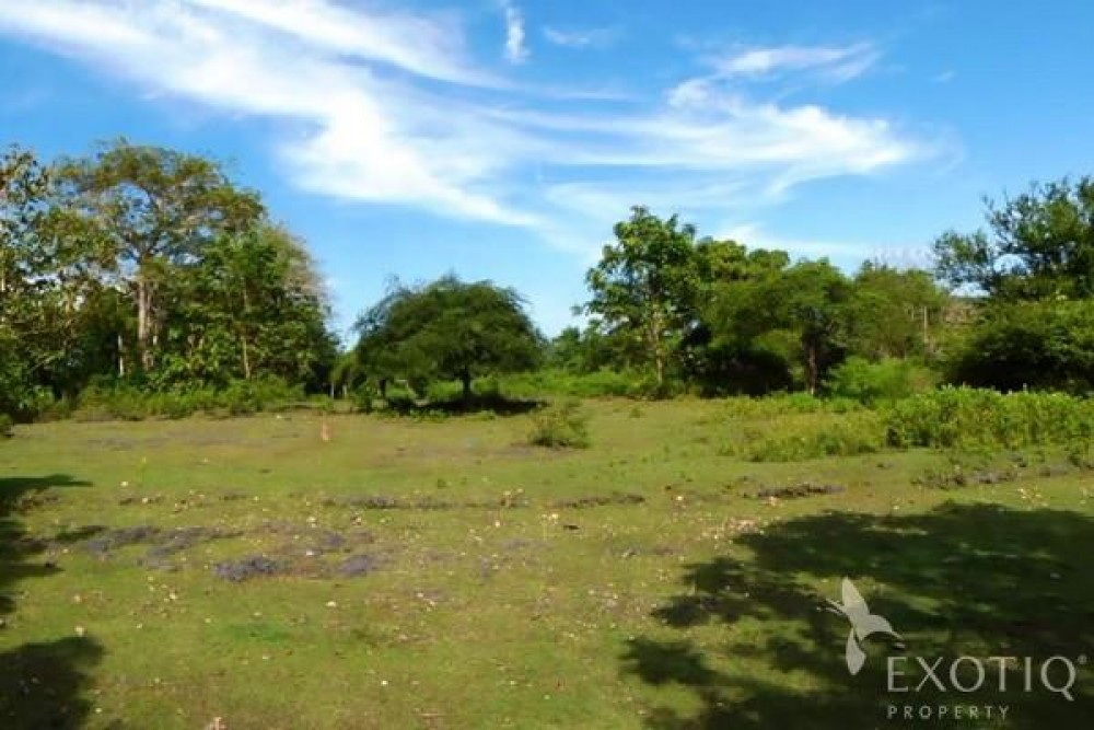 Stunning Golf Course View Freehold Land In Bukit
