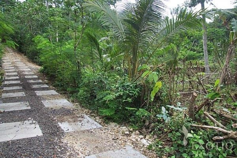 Premium Freehold Land in A Tropical Surrounding of Bukit