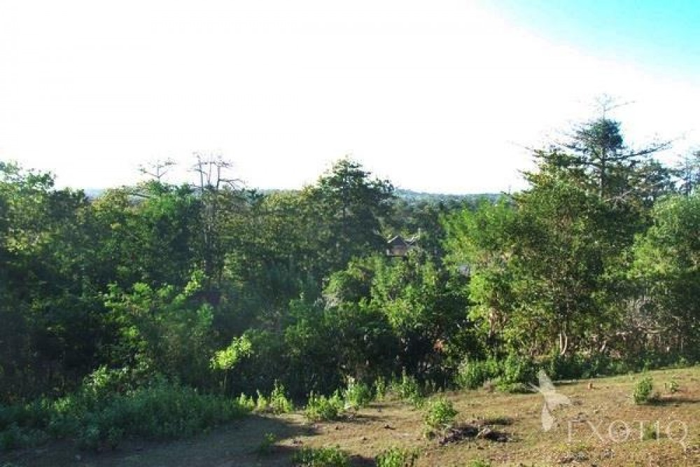 Unobstructed Jimbaran Views Freehold Land in  Bukit