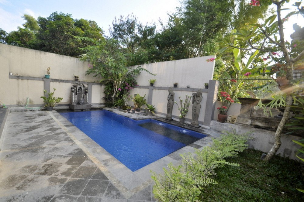 Modern Balinese style house with rice field view in Ubud