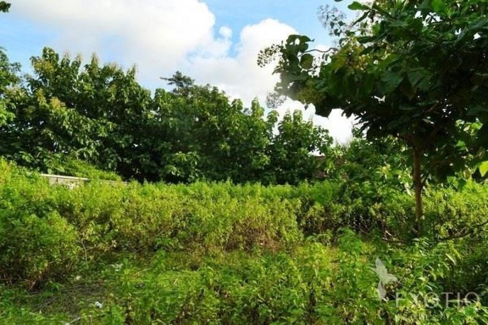 Great Potential Land Close to Jimbaran Bay