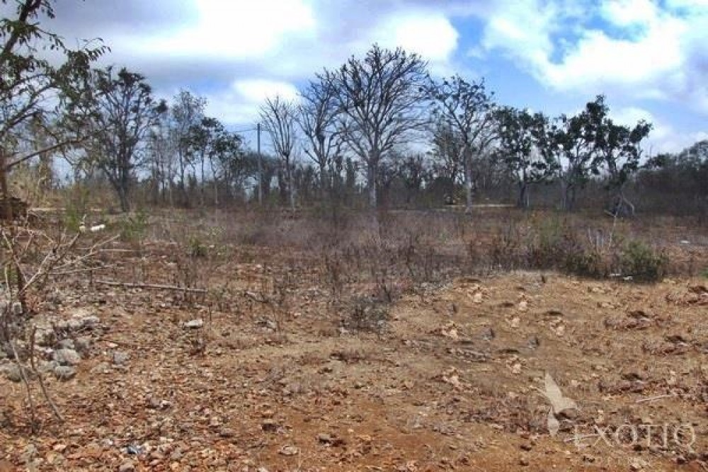 Freehold Land in a Great Potential Area of Jimbaran