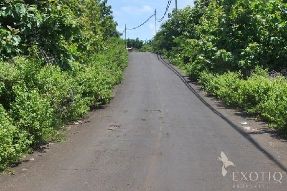 Great Investment Freehold Land in Jimbaran