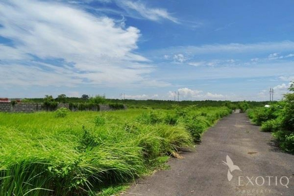 Great Freehold Ideal Land in Jimbaran