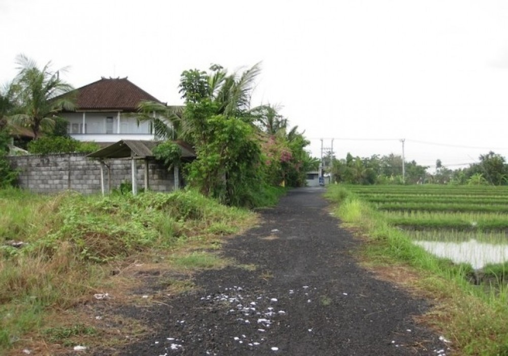 Freehold Land in Umalas