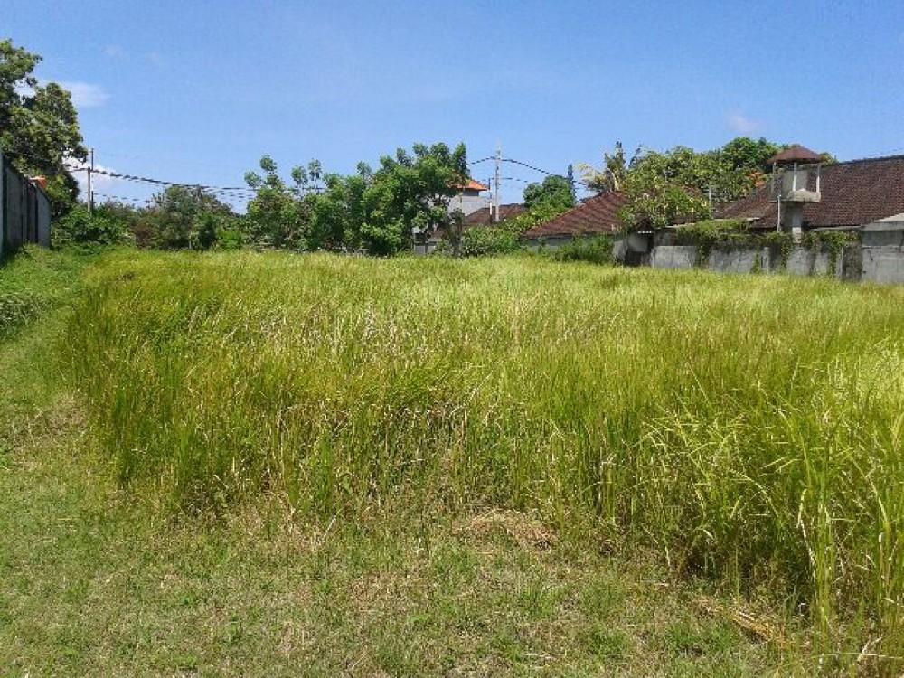 Great Well Shaped Land in Kerobokan