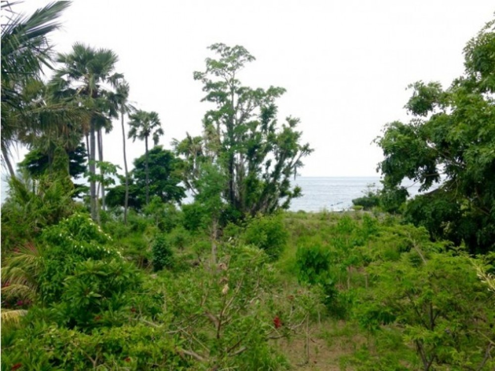 Beautiful Beachfront Freehold Land in Amed