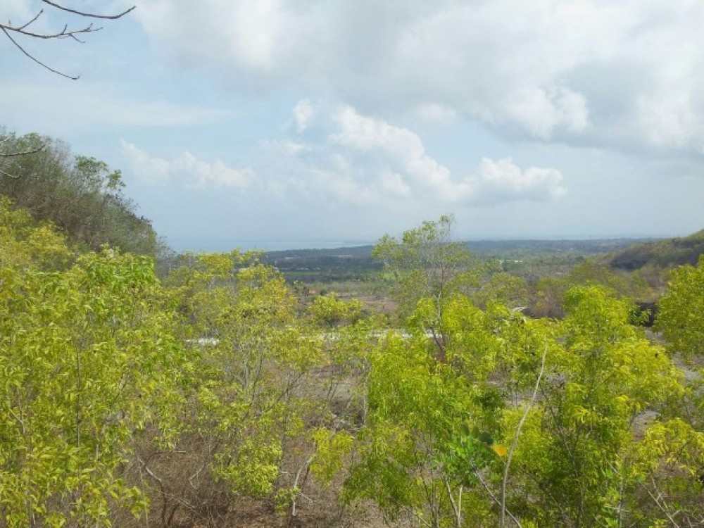 Unblockable Ocean View Freehold Land in Bukit
