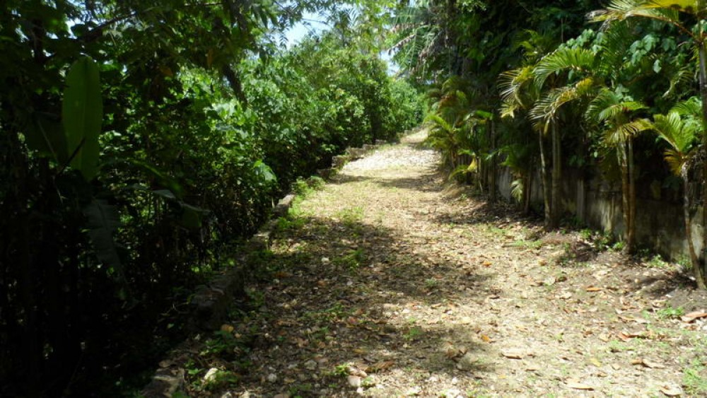 Centrally Located Freehold Land in Tabanan