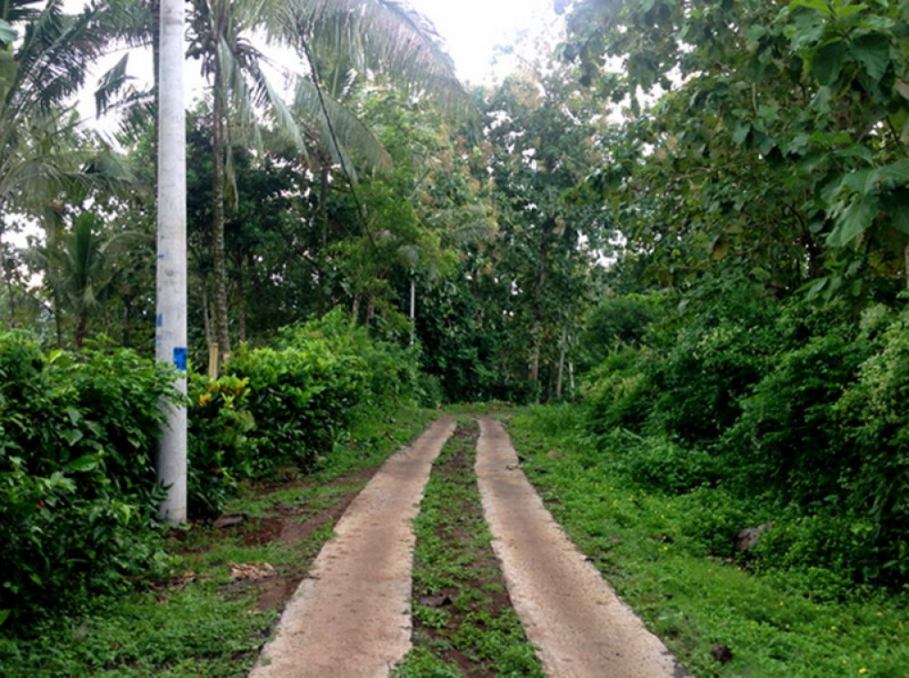 Great Freehold Investment Land in Tabanan