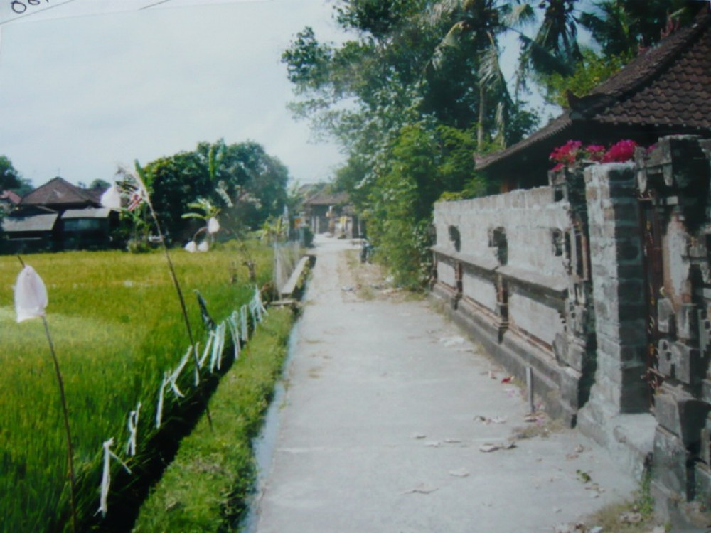 9.4 Are Freehold Land In Tabanan