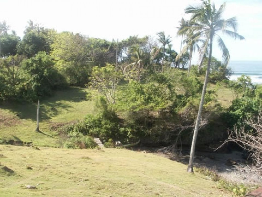 Great Beachfront Land in Tabanan