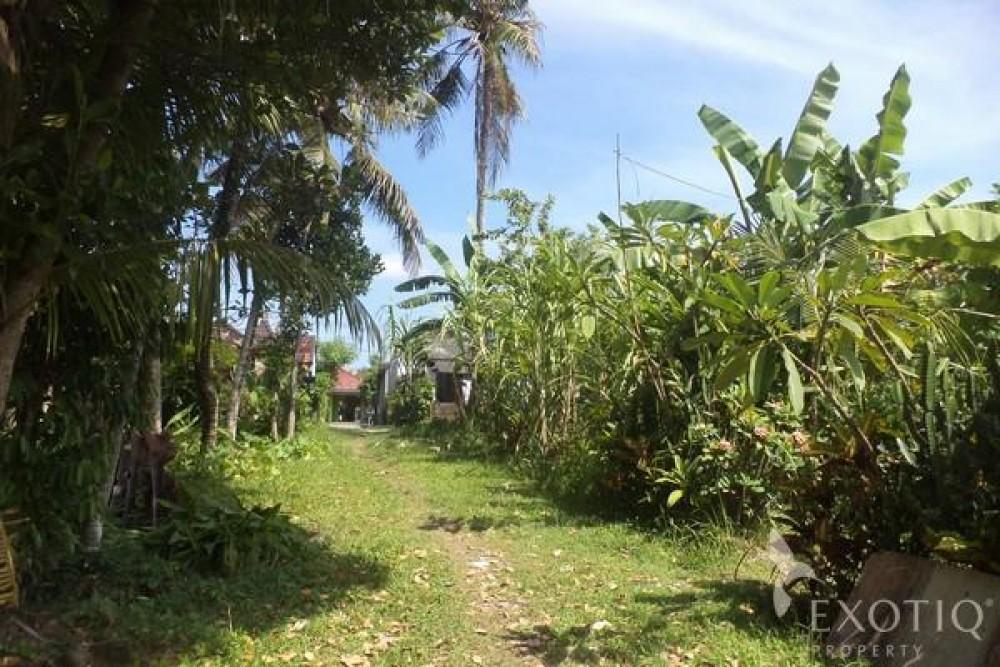 Great Riverside Freehold Land in Tanah Lot Tabanan