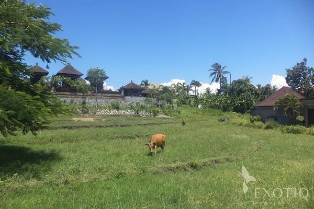 Land Just minutes from beach in pererenan canggu