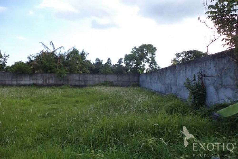 Quiet Country Side Freehold Land in Canggu