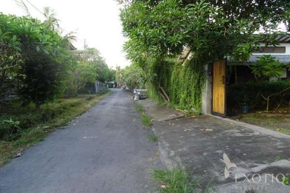 Beautiful Freehold Land For Building in Pererenan Canggu