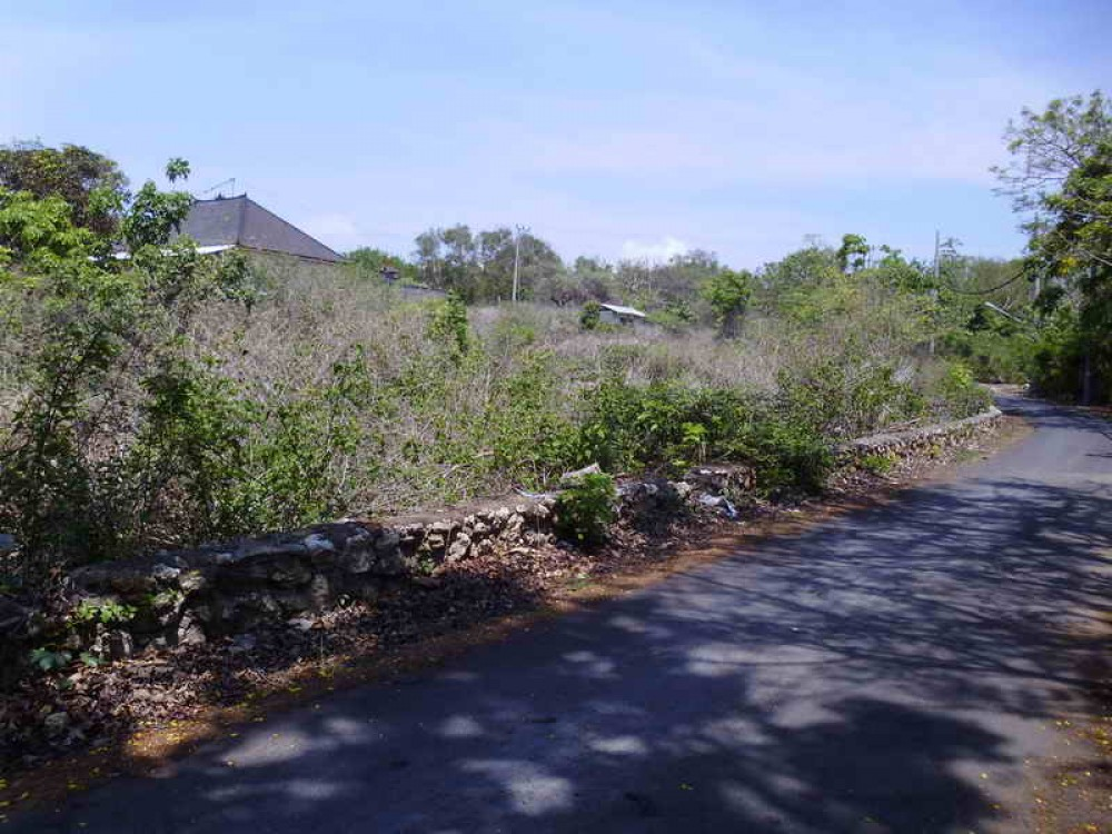 Premium Freehold Land in Nusa Dua