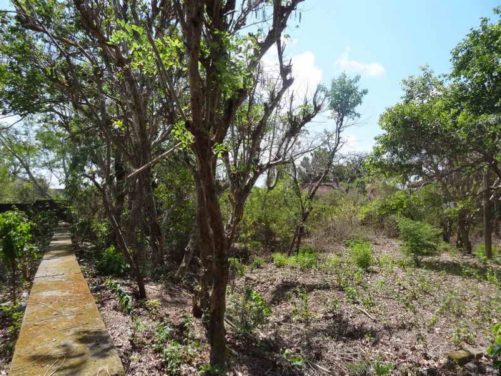 Great Vacant Freehold Land in a Complex in Nusa dua