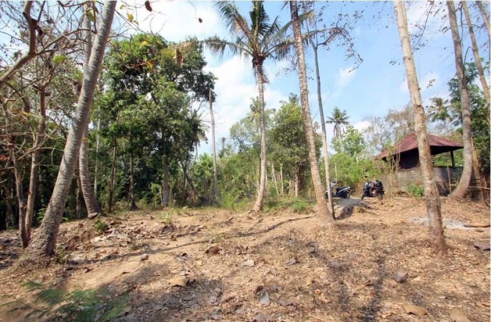 Great Freehold Land in Kedungu Tanah Lot