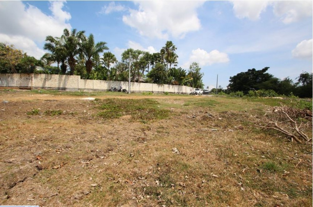 12 Are Freehold Land in Canggu