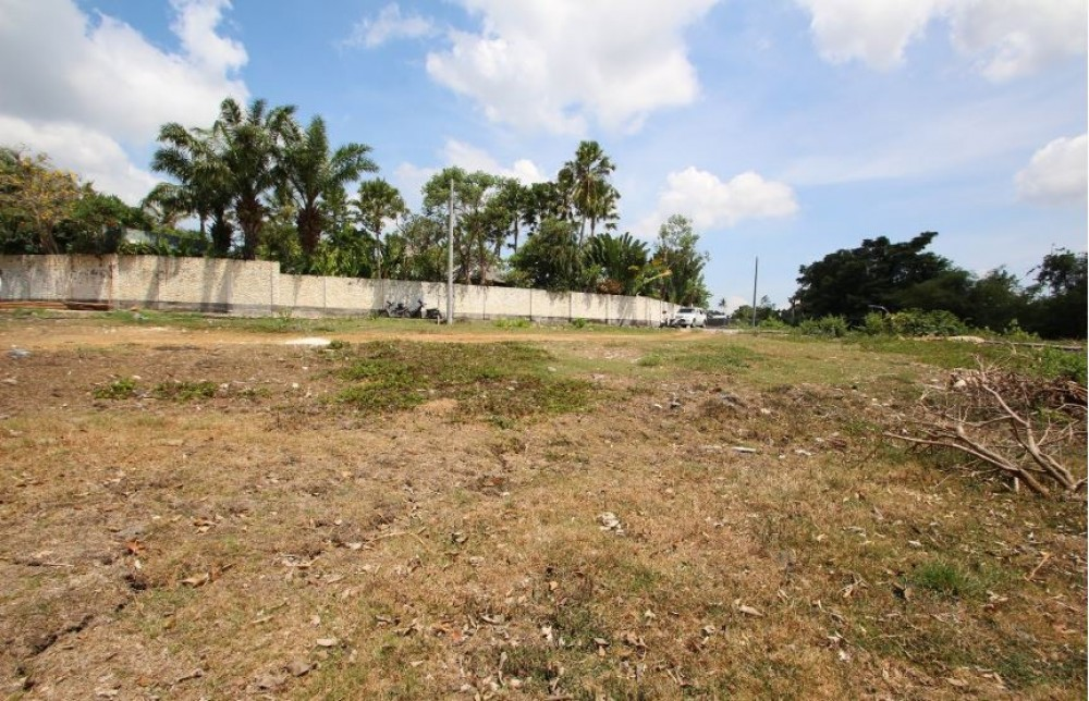 25 Are Freehold Land in umalas