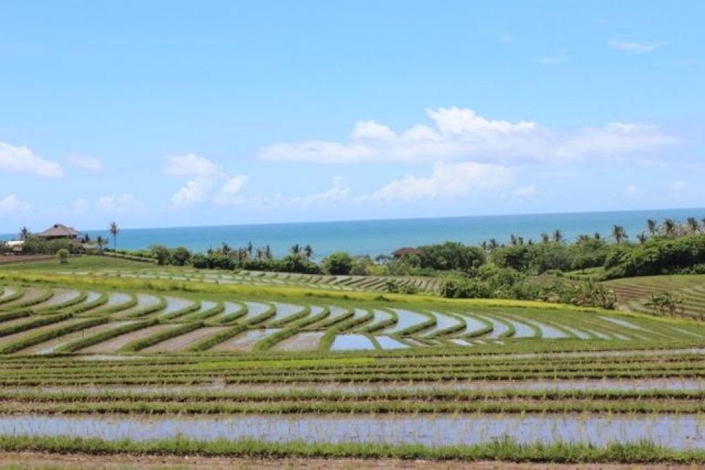 Wonderful land in Tabanan area